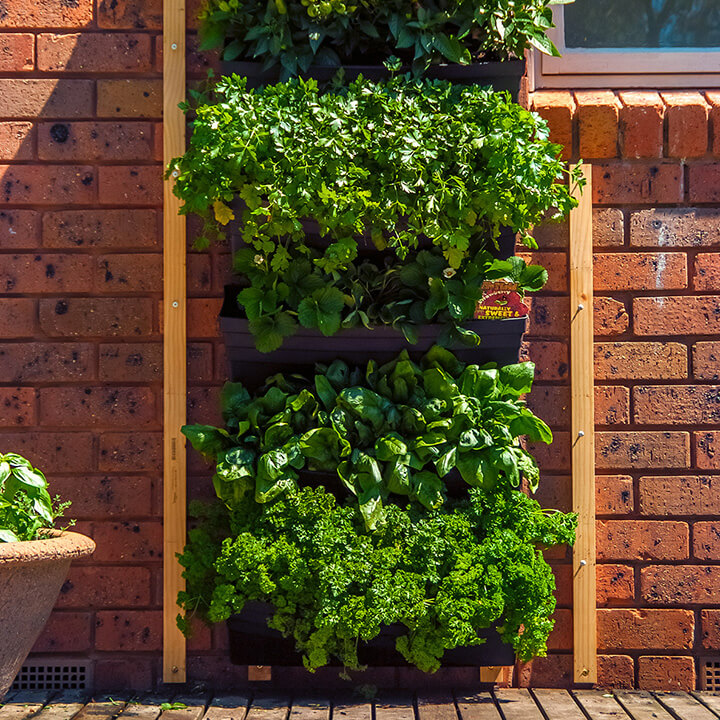 Create a living wall from any vertical space for Vertical garden wall systems