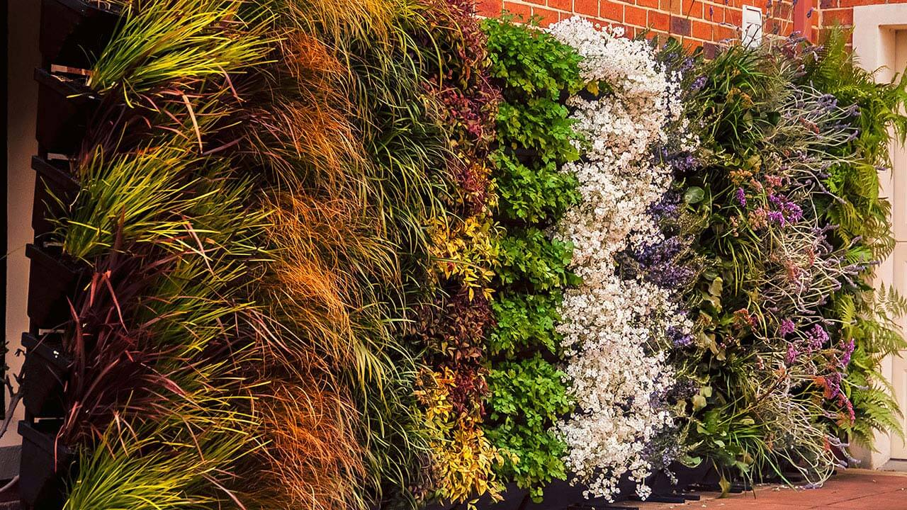 Large vertical gardens with flowers and grasses.